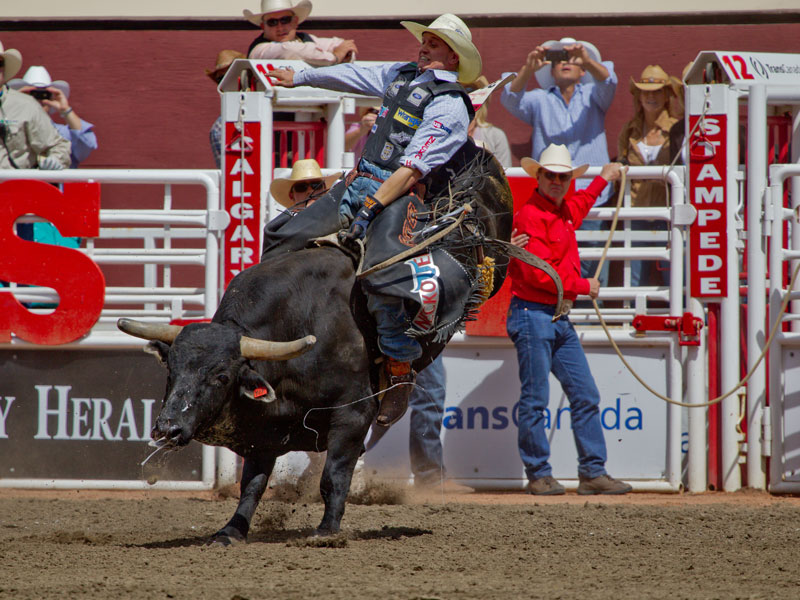 Calgary Stampede and the Canadian Rockies Train Tour