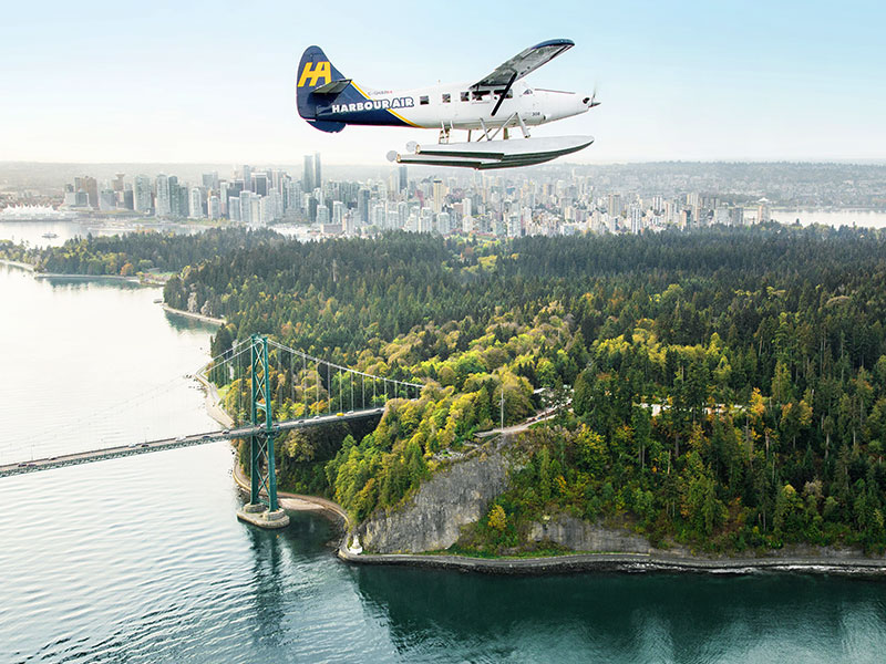 Grizzly Bears & the Canadian Rockies Train Vacation   Vancouver Harbour Air