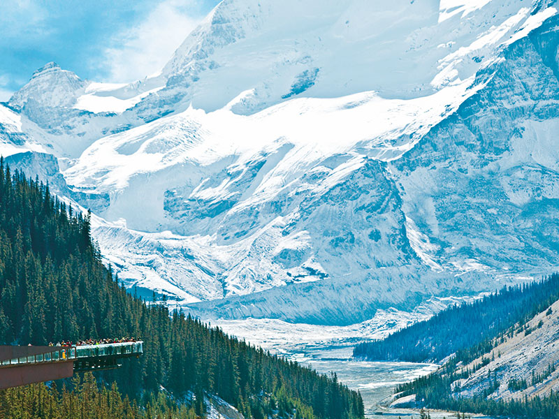 Grizzly Bears & the Canadian Rockies Train Vacation   Glacier Skywalk Canadian Rockies