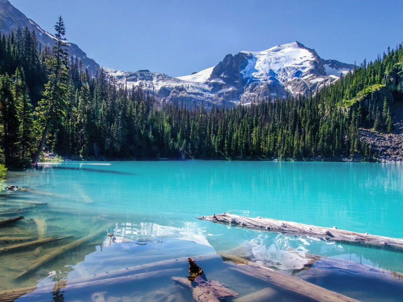 Majestic Canada Train Vacation through the Rockies | Canadian Rockies