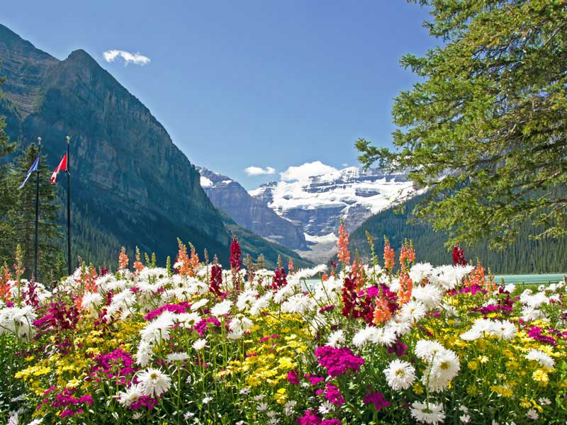 Whistler and the Canadian Rockies by Train Circle Tour | Lake Louise